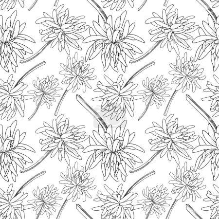 Illustration pour Vecteur Chrysanthème floral fleur botanique. Feuille sauvage de printemps fleur sauvage isolée. Encre gravée en noir et blanc. Modèle de fond sans couture. Texture d'impression papier peint tissu . - image libre de droit