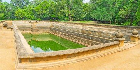 Panorama des étangs Twin