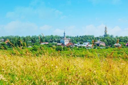 The churches of Suzdal through the grass