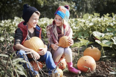 Photo pour Garçon et fille sur le champ de citrouille, avant l'halloween - image libre de droit