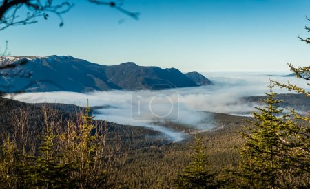 Photo for Top of Richardson Mountain in National Park of Gaspe in Quebec, Canada during a Beautiful Sunny Warm Autumn Day. - Royalty Free Image