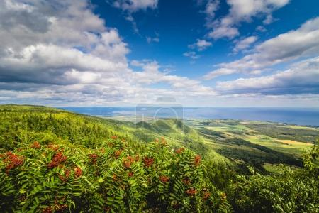 Beautiful panoramic view from the top of St-Joseph mountain in Carleton city, Gaspe, Quebec, Canada.