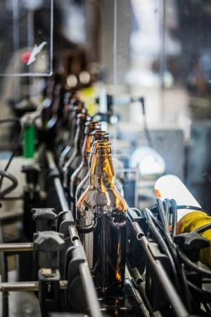 Conveyor with beer bottles