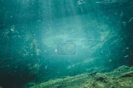 Dead Tree and Reays of Light in a clear Water River in Canada