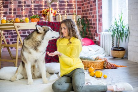 Photo for Cute teenage girl with blond curly hair in a studio with autumnal decorations with pumpkins and yellow leaves with a big malamute dog . People and Dogs. Autumn mood - Royalty Free Image