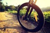 wheel of mountain bike