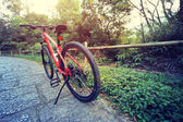 mountain bike at forest path