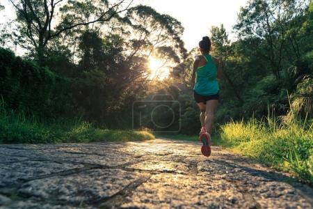 Photo pour Jeune femme de fitness athlète courir sur le sentier forestier - image libre de droit