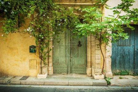 Architektur - historische Gebäudefront und Pflanzen