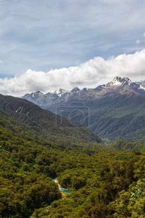 Photo for Fiordland National Park. River among the dense forest below. South Island, New Zealand - Royalty Free Image