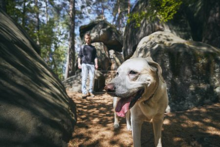 Man with his dog on footpath in the middle of rock foramtions. Bohemian Paradise, Czech Republic