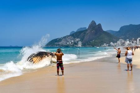 Brazil, Rio de Janeiro - November, 2017 :  Washed Ashore Decomposing Whale in Ipanema Beach in Rio de Janeiro