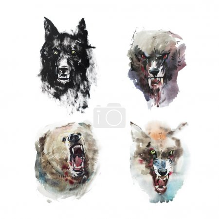 Watercolor drawing of angry looking wolves and bear