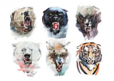 Photo for Watercolor drawing animals portrait on white background - Royalty Free Image
