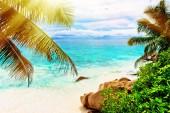 Tropical island. The Seychelles.Toned image.