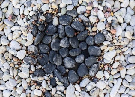 Pebbles in rock garden