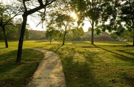 Photo pour Beau parc verdoyant avec arbres et piste de jogging. Rayons et fusées éclairantes. Contexte naturel . - image libre de droit