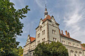Schonborn Palace in Chynadiyovo, Ukraine.