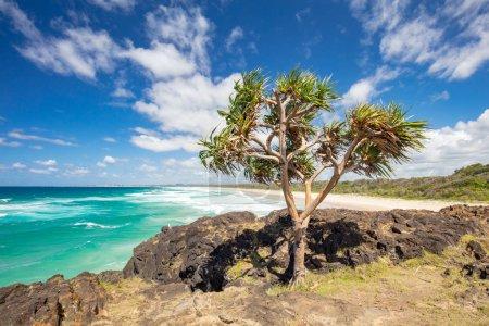 Fingal Head Dreamtime Beach