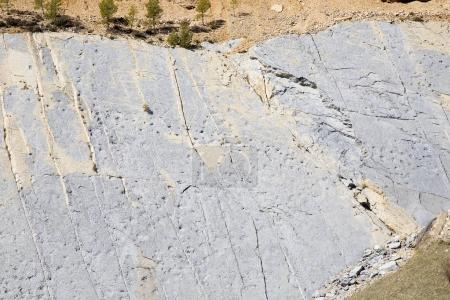 dinosaur footprints in Fumanya at sunny day, Spain