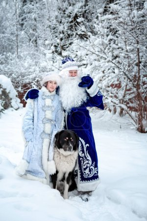 Photo for Father Frost, Snow Maiden and a large dog on a background of snowy trees. Winter, December. Russian Christmas characters Ded Moroz (Father Frost) and Snegurochka (Snow Maiden). Christmas Eve. - Royalty Free Image