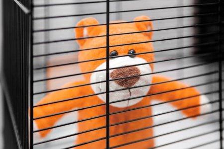 Foto de Un oso teddy detrás de los bares de una jaula. Auto-aislamiento. Lucha contra el virus. Conciencia cívica. - Imagen libre de derechos