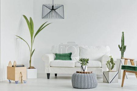 Photo for White living room with decorative houseplants, sofa and armchair - Royalty Free Image