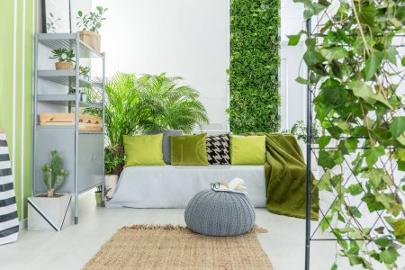 Photo for Botanical living room with grey sofa, green pillows and bookcase - Royalty Free Image