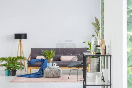 Photo for Blue blanket and pink pillows on black sofa near a lamp in living room interior with plants and green poster on white wall - Royalty Free Image