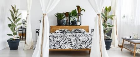 Photo for White marquees in floral bedroom interior with wooden bed with patterned bedsheets and plants on bedhead - Royalty Free Image