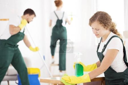 Photo for Cleaning specialist wiping the table using green detergent and cloth - Royalty Free Image