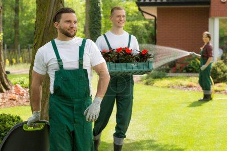 Garden heroes making every backyard a masterpiece