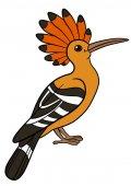 Cartoon birds Cute beautiful hoopoe smiles