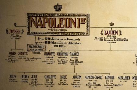 Photo pour Corse, 01 / 09 / 2017 : l'arbre généalogique de Napoléon Bonaparte à la Maison Bonaparte à Ajaccio, monument historique depuis 1967, demeure ancestrale de la famille Bonaparte et berceau de Napoléon - image libre de droit