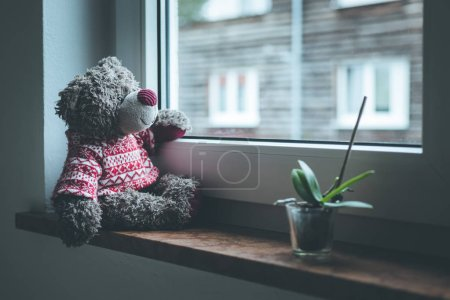 Photo for Cute teddy bear is sitting on the windowsill, looking out of the window - Royalty Free Image