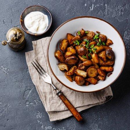 Photo pour Pommes de terre rôties aux cèpes dans bol sur fond de Pierre - image libre de droit