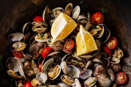 Vongole Shells Clams