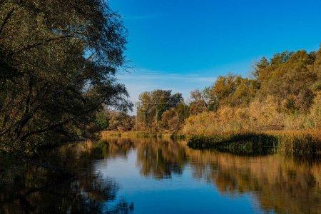 Photo pour Rivière et forêt de feuillus par une journée ensoleillée. Saison d'automne, octobre. Rivière Psel (Ukraine). Europe. - image libre de droit