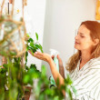 Young woman taking care of the house plants, garde...