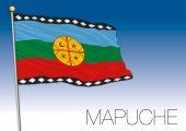 Mapuche population flag and colors