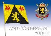 Walloon Brabant regional flag Belgium