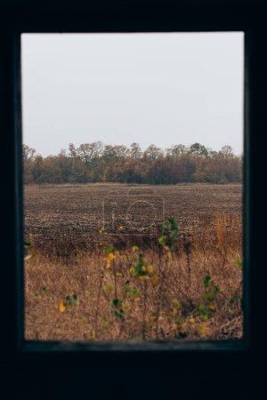 Photo pour Concentration sélective du champ de la fenêtre de la maison abandonnée - image libre de droit