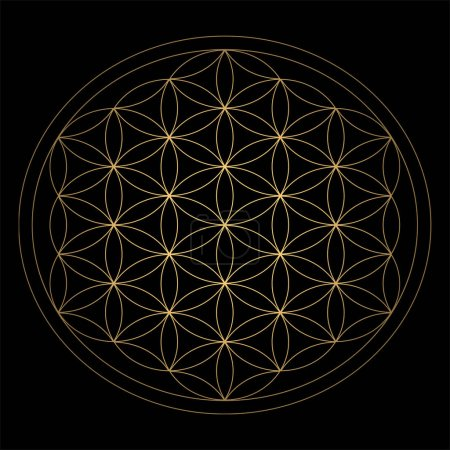Sacred Geometry. Ancient outline gold Flower of Life symbol on a black background. Flower with six petals. The ancient symbol of the Seed of Life.