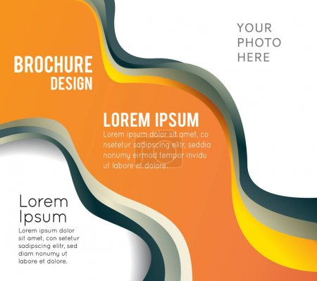 design smooth curve lines brochure