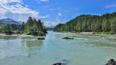 Amazing turquoise mountain river among wooded shores - sunny sum
