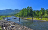 Bright summer landscape with light bridge over fast mountain riv
