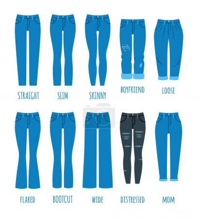 Illustration for Women jeans styles collection. Denim fashion female pants. Trendy models of cotton trousers for modern girl. Flat vector icons. Clothing guide infographics - Royalty Free Image