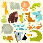 Big set of vector animals. Tropical animals. carto...