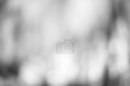 Grey Abstract Defocused Background