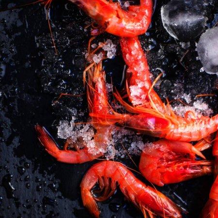 Fresh raw shrimps  with ice